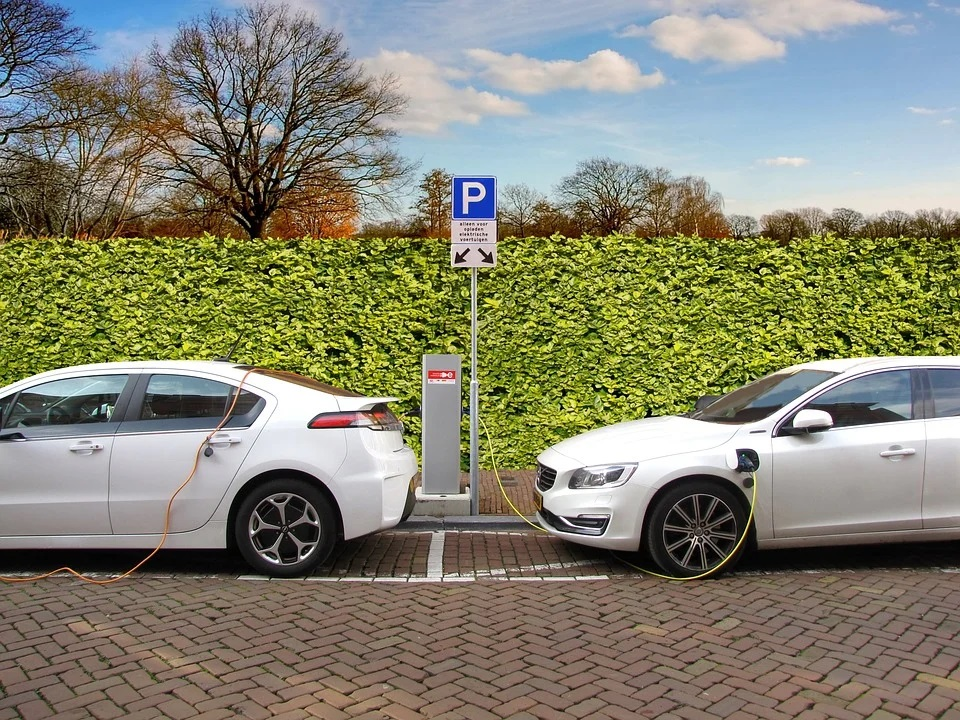 Electric cars or regular ones?